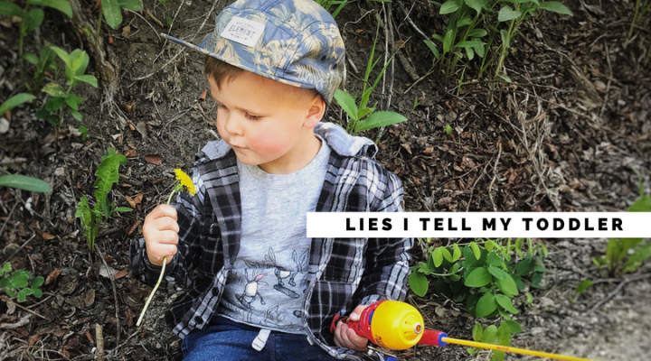 Lies I Tell My Toddler