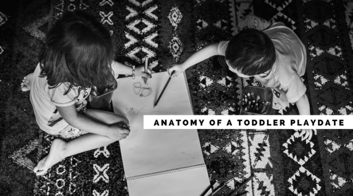 Anatomy of a Toddler Playdate